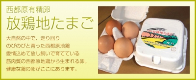 image1_sm